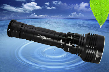 LED Dive Torch